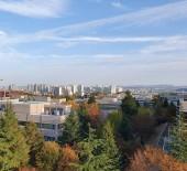 환경동 옥상의 가을
